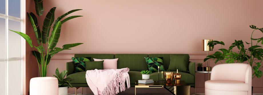 décorer votre maison avec des plantes d'intérieur